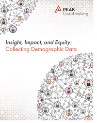 Insight, Impact, and Equity – Collecting Demographic Data Report
